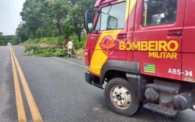 Atoleiros e árvores na pista, situação das rodovias na região Oeste de Goiás