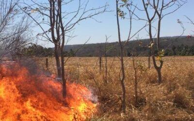 Incêndios continuam na região Oeste de Goiás, propriedades inteiras queimadas