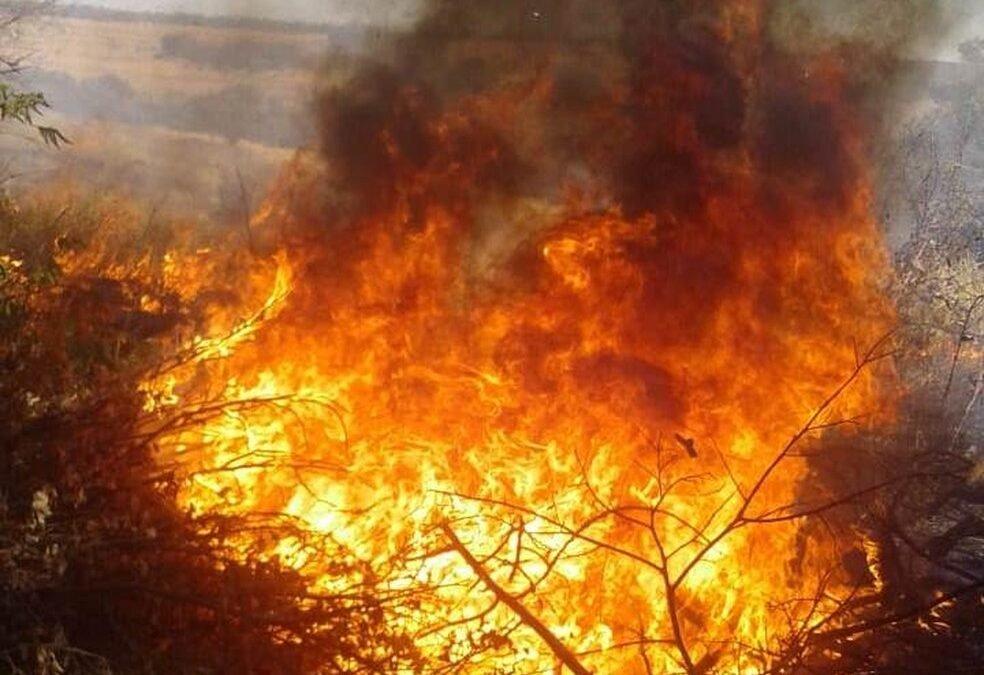 Secretaria da Agricultura de Goiás cria grupo de combate a incêndios na zona rural